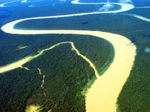 Floresta Amazonica2